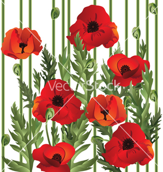 Free poppies vector - vector gratuit #269861