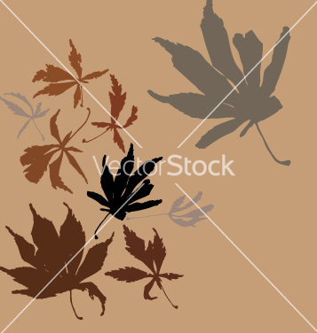 Free autumn leaves vector - Free vector #270781