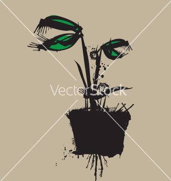 Free venus fly trap vector - бесплатный vector #270951