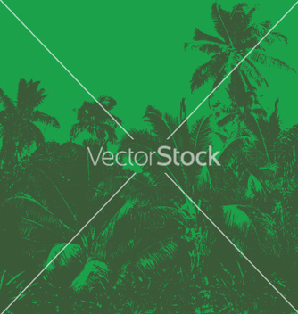 Free tropical jungle vector - Free vector #271001