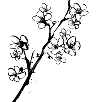 Free cherry blossom ink vector - бесплатный vector #271491