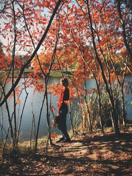 #autumncity, Girl under autumn trees on the shore of the lake - бесплатный image #271701