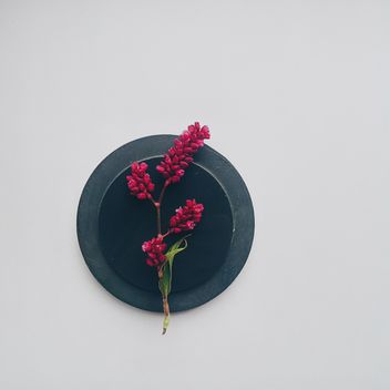 Sprig of flowers on black round stand - бесплатный image #272171