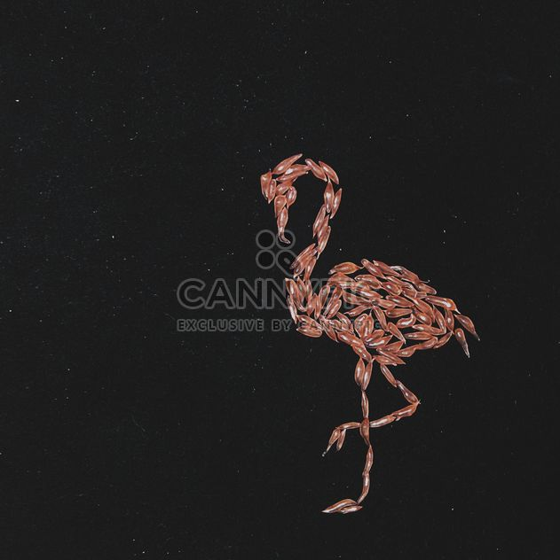 flamingo made from the pulp of grapefruit on a black background - Free image #272251