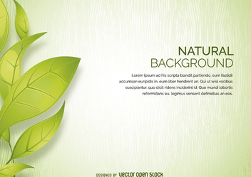 Leaves background - vector #272501 gratis