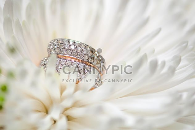 Wedding ring in flower - image gratuit #272571
