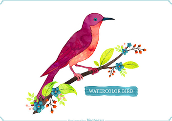 Free Vector Watercolor Bird - бесплатный vector #274051