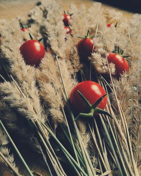 Tomatoes on wooden board on dry spicas - бесплатный image #274861
