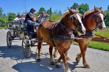 carriage drawn by two horses - image gratuit #275041