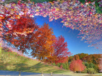 Reflecting on the change of seasons - NJ - image gratuit #279091