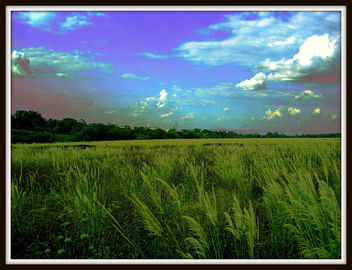Sweet Earth - image #279391 gratis