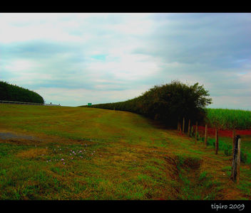 Green Belt - image #279961 gratis