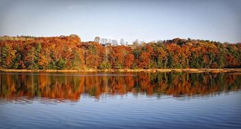 Indian Summer in New England - image gratuit #280191