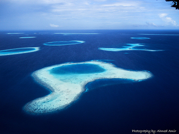 Over the reefs - Free image #280231