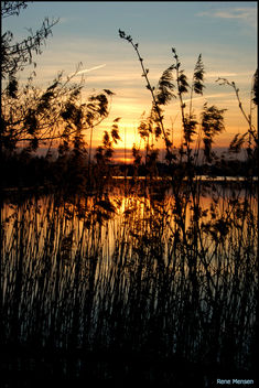 Sunset at the Rietplas - Free image #284101