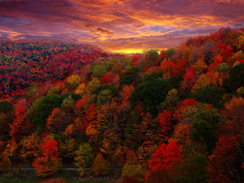 Fall Foliage Photography - image #285361 gratis
