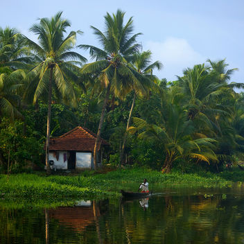 God's Own Country - Kerala - Kostenloses image #286421
