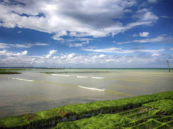Oyster Farm On Utah Beach - image gratuit #286981