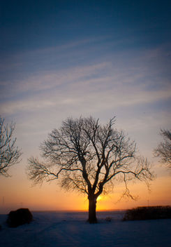 Sun rise on a beautiful day - Free image #287521