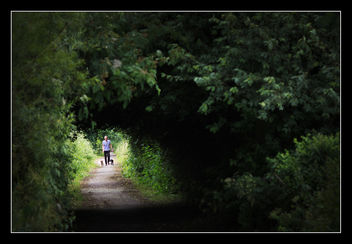Natures Tunnel - image #288651 gratis