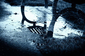 Winter puddle - Free image #291081