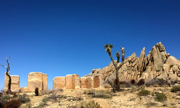 Ryan Ranch II, Joshua Tree - image gratuit #291801