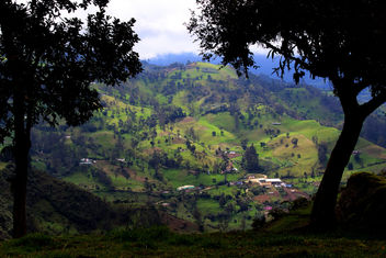 Sweet green - image #293221 gratis