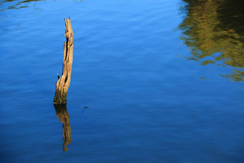 Orange River Reflections - Free image #295541