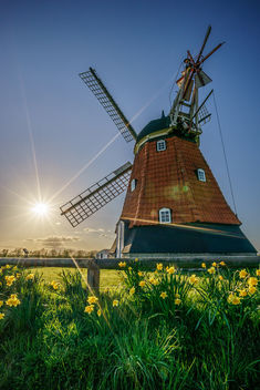 Bjerre windmill, Stenderup, Denmark - Travel photography - бесплатный image #297461