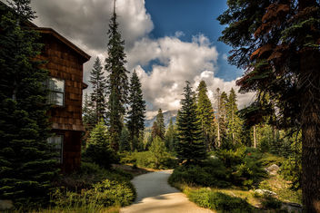 Wuksachi Lodge Resort - бесплатный image #299681