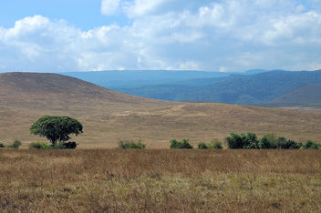 Tanzania (Ngorongoro) Another view from conservation area - Kostenloses image #300811