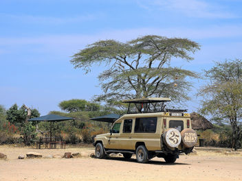 Tanzania (Serengeti National Park) Safari vehicle - image #300961 gratis