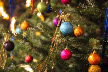 Decorated Christmas tree - Free image #302361
