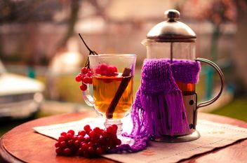 warm tea outdoor with vibrunum - image gratuit #302921
