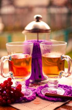 warm tea with cinnamon - image gratuit #302931