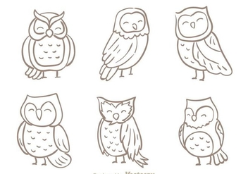 Hand Drawn Owl Vector - Free vector #303001