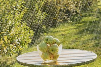 Summer rain and green apples - image gratuit #303271