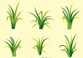 Fragment Of Green Grass Vectors - vector gratuit #303901