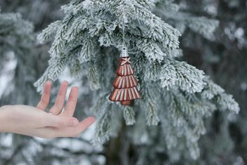 Hand reaching the Christmas toy - бесплатный image #304091