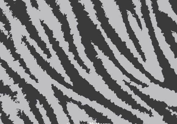 Gray Zebra Print Background - vector #304301 gratis