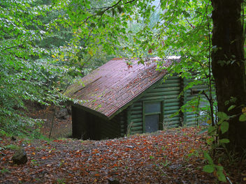 Turkey (Bolu-Seven Lake National Park) Abandoned cottage - Free image #304441
