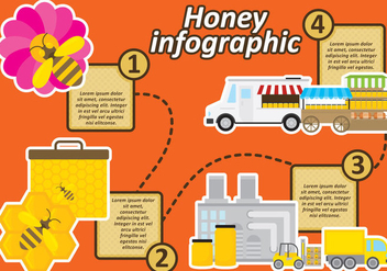 Honey Infographic - vector #305021 gratis
