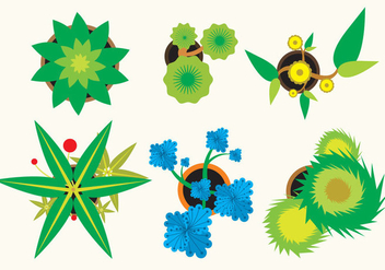 Various Plants Top View - vector gratuit #305811