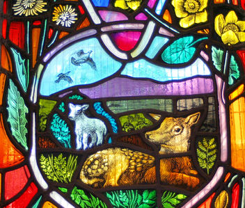 Local Wildlife - stained glass window, Dornoch Cathedral #3 - Free image #306041