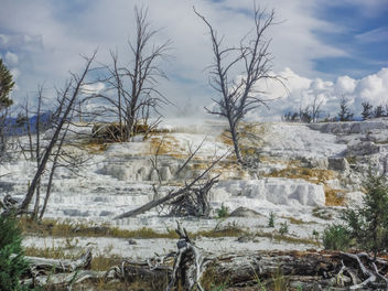 Yellowstone National Park. - Kostenloses image #306981