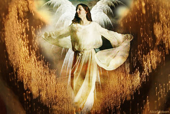 calling the angels for Japan - Free image #308891