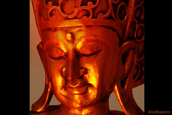 Light of the Buddha - Free image #308941