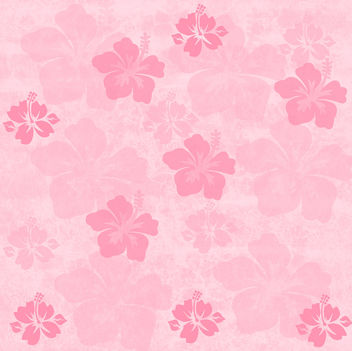 Red tones, pale pink, peach colored Hibiscus Tropical Flowers on a grunge background, free download - image gratuit #309891