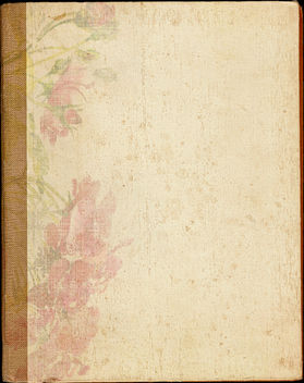 Old Book Back Texture - Free image #311171
