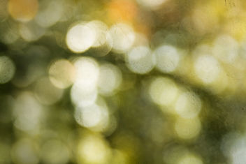 bokeh texture for your use - image gratuit #313471